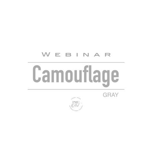 Camouflage GRAY Webinar